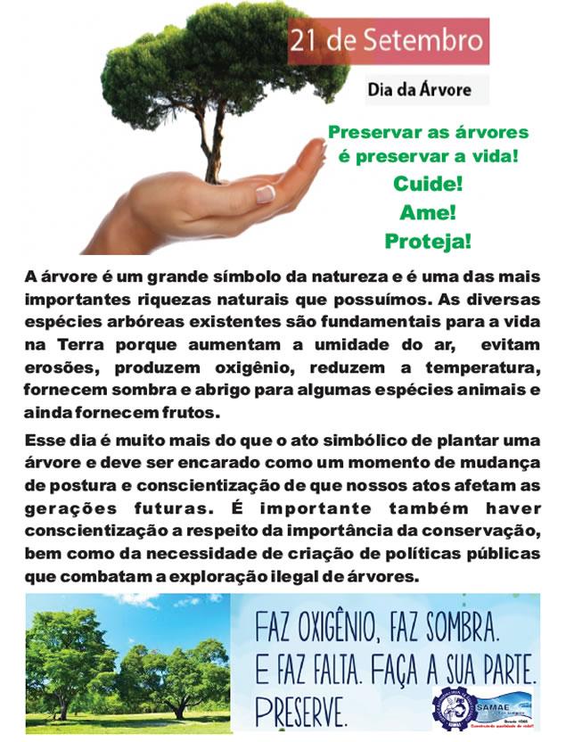 Preservar as árvores é preservar a vida!